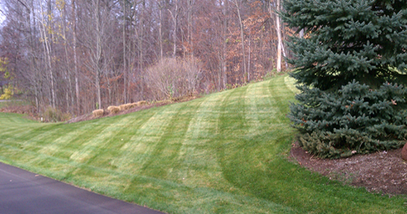 img-lawn-care